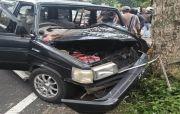 Sopir Ngantuk Berat, Mobil Kijang Seruduk Pohon Perindag di Baturiti