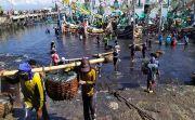 [Kabar Baik] Sektor Perikanan Local Tak Terpengaruh Wabah Corona
