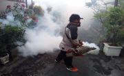 Fokus Tangani Corona, Kasus DB di Bali Naik Hingga 100 Persen Lebih