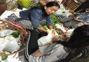 Bantu Korban Covid-19, STT Banjar Silakarang Bagikan Sayur Mayur