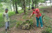 Bersih-bersih Kebun, Warga Pedawa Temukan Benda Diduga Sarkofagus