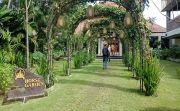Taman Prakerti Bhuana Baru Dibuka, 30 Pengantin Langsung Daftar