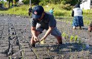 Menyelamatkan Petani dengan Pasar Gotong Royong Krama Bali