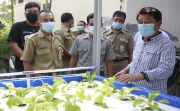 Ubah Pola Pikir, KK Miskin Diajak Kembangkan Pertanian Hidroponik