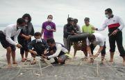 Terumbu Karang Pesisir Nusa Penida Rusak, Ini Langkah Bupati Suwirta