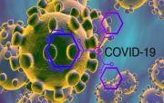 Dinkes Benarkan Virus Varian Baru B1351 dari Afrika Selatan Masuk Bali