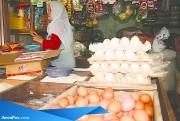 Harga Telur Mulai Turun