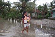 Kampung Petak 56 Masih Tergenang Air Sisa Banjir