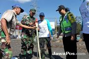Raker di Banyuwangi, Karyawan PLN Tanam 500 Pohon Cemara Laut