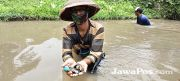 Sungai Sering Banjir, Pencari Kijing Ketiban Berkah