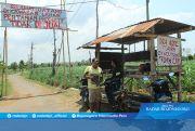 Satpol ''Berangus'' Baliho-Gapura Penolakan Kilang