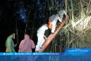 Heboh Penemuan Jasad Tersangkut Pohon Bambu