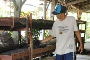 Cacing Tanah Hasil Budidaya Sukartono Diekspor untuk Bahan Kosmetik