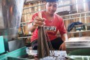 Pembuatan Dupa dari Limbah Kayu Gaharu di Ploso, Sehari 50 kilogram