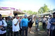 Pengacara Kondang Achmad Rifai Kurban 125 Sapi dan 1.200 Kambing