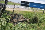 Desa Tinggar dan Karangdagangan Bandarkedungmulyo Terancam Limbah B3