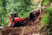 Penanganan tebing yang longsor di Jarak, Terkendala Pohon Besar