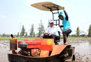 Menteri Pertanian Andi Amran Ajak Pemuda Kediri Turun ke Sawah