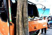 Angkut Sengon, Truk Tabrak Akasia di Sukorame