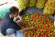 Pemkab Tidak Batasi Sayur dari Zona Merah