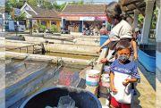 Hobi di Kala Pandemi yang Ikut Memutar Roda Ekonomi (2)