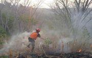 Belasan Titik Hutan Terbakar
