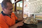MeneluMenelusuri Jejak Zaman Purba di Nganjuk (27)