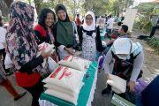 Lebih Murah, Festival Hasil Tani Dinas Pertanian Ludes Diserbu Warga