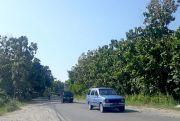 Jalan Hutan Sale Dipasang 30 Unit Lampu Jalan