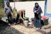 Manfaatkan Limbah Pertanian, Mahasiswa UGM Kembangkan Pakan Ternak