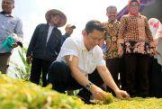 Reses, Donny Priambodo Ajak Petani Pasarkan Tembakau secara Online