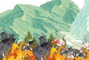 Api Lahap 50 Hektare Hutan Jati di Kabupaten Blora