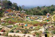 Agrowisata Jollong-Gunungrowo Ditarget Tersambung Tahun Depan