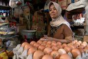 Harga Telur di Pasar Tradisional Tembus Rp 27 Ribu per Kilogram