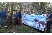 HFI dan Humanity First USA Salurkan Hewan Kurban di Zona Merah Korona