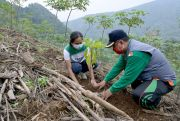 Djarum Foundation Bantu Petani Tanam 67 Ribu Pohon di Lereng Muria