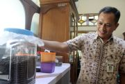 DKPP Jepara Drop Lima Ribu Bibit Kopi di Bategede