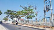 Syahbandar Nilai Perlu Jalan Lingkar Pelabuhan