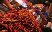 Kanaikan Harga Cabai Rawit Paling Pedas di Pasaran