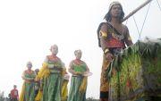Majapahit Culture Festival, Magnet Pariwisata Budaya