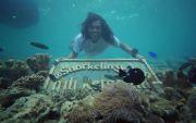 Pesona Snorkeling dan Fee Diving di Surga Mungil Laut Jawa
