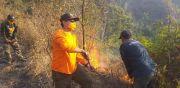 Kebakaran Hutan Makin Meluas, 406 Hektare Hangus