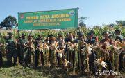 Sulap Lahan Tak Produktif Jadi Sentra Jagung