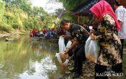 252 Ribu Benih Ikan Disebar di Kali Samin