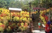 Berwisata Sejarah ke Taman Punden Tingkir, Kalijambe, Sragen