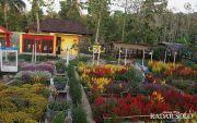 Mengenal Aneka Bunga di Taman Kebon Asri, Bayat, Klaten