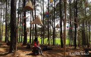 Yuk Travelling, Menenangkan Diri ke Hutan Pinus Pasekan
