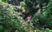 Terjun ke Jurang 15 Meter saat Gowes Sepeda, Warga Ceper Meninggal