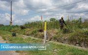 Sawah Tergusur Proyek Tol, Petani Kebingungan Cari Lahan Pengganti