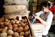 Harga Telur Turun, Februari Jatim Deflasi 0,18 Persen